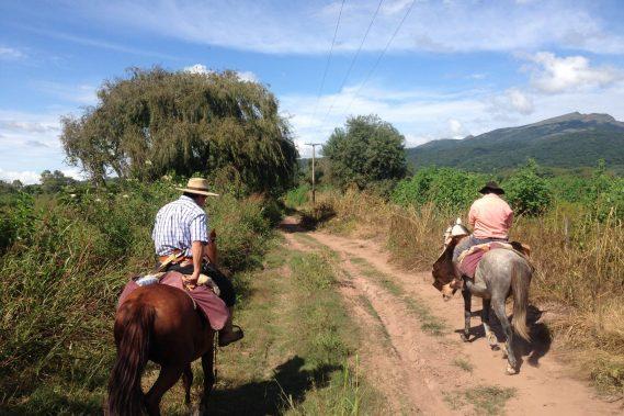 Cabalgatas Valle de Lerma - Salta  -  Medio día o Día completo